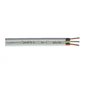 Cable TPS 2.5mm2 twin and earth [1 meter]