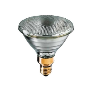 PAR 38 120W flood light globe