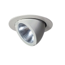 Snorkel downlight white